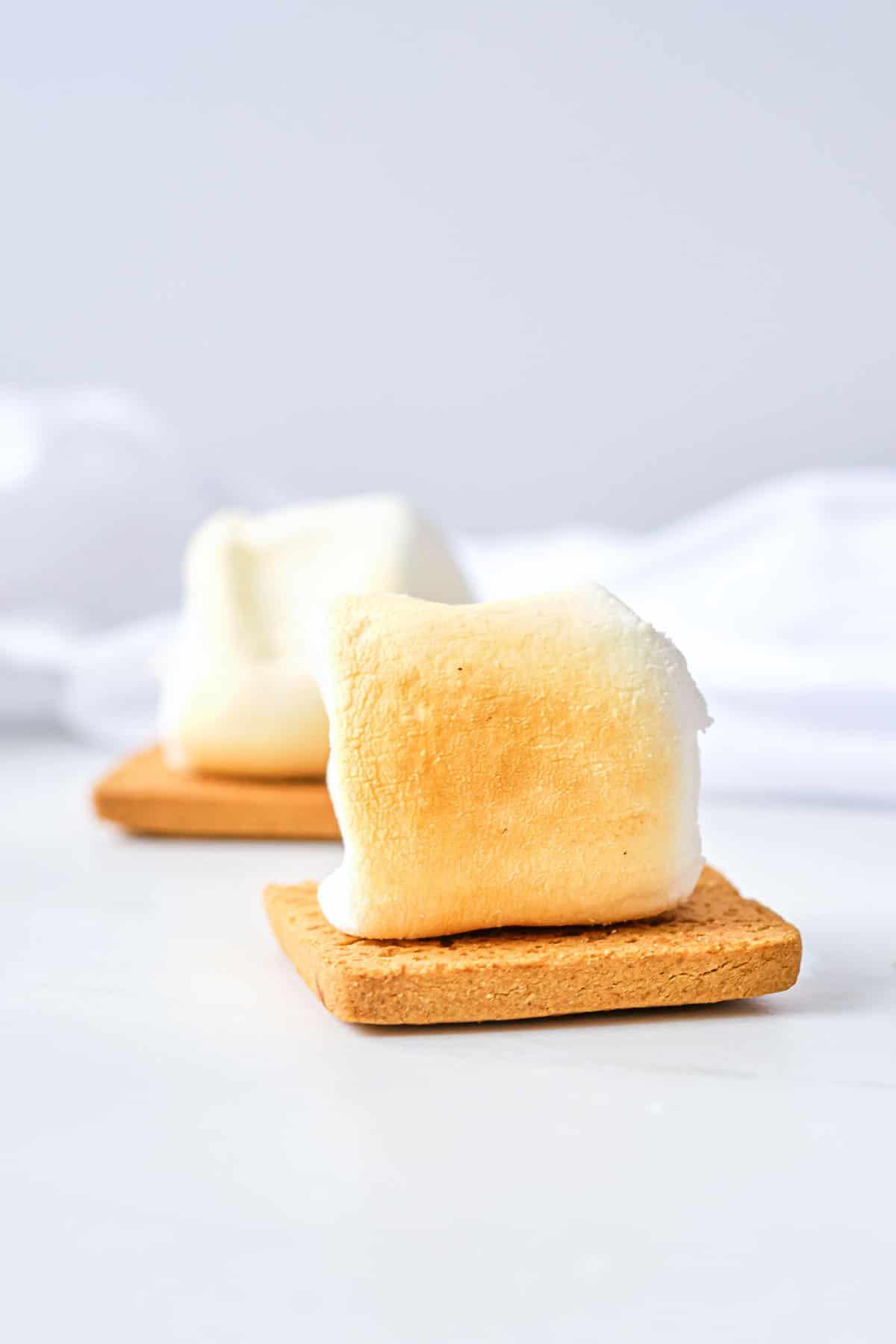 a marshmallow on a graham cracker