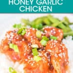 honey garlic chicken over rice topped with green onion